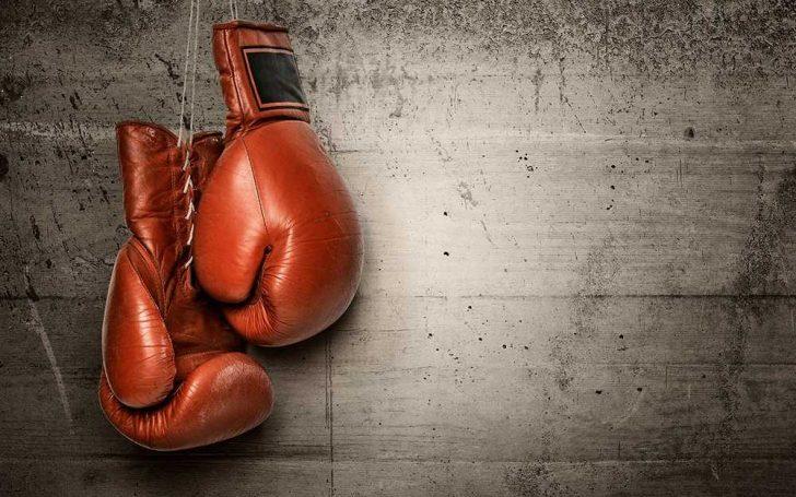 Боксерские перчатки — большое разнообразие выбора